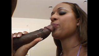 امرأة سوداء ذات مؤخرة منتفخة تمتص قضيبه جيدًا وتأخذها بقوة في المؤخرة